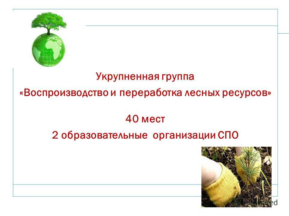 18 Укрупненная группа «Воспроизводство и переработка лесных ресурсов» 40 мест 2 образовательные организации СПО