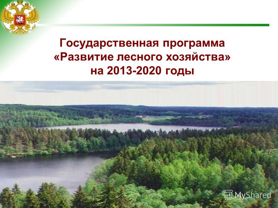 1 Государственная программа «Развитие лесного хозяйства» на 2013-2020 годы