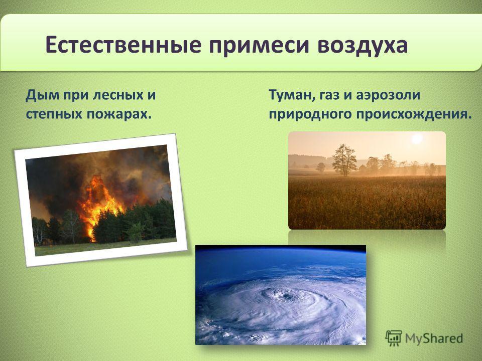 Дым при лесных и степных пожарах. Туман, газ и аэрозоли природного происхождения.