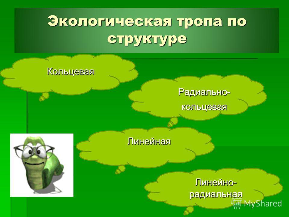 Экологическая тропа по структуре Экологическая тропа по структуре Картон Радиально- Радиально- кольцевая кольцевая Линейная Кольцевая Кольцевая Линейно- радиальная Линейно- радиальная