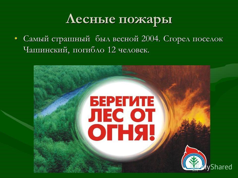 Лесные пожары Самый страшный был весной 2004. Сгорел поселок Чашинский, погибло 12 человек.Самый страшный был весной 2004. Сгорел поселок Чашинский, погибло 12 человек.