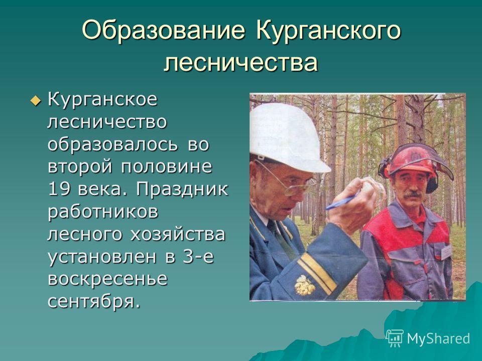 Образование Курганского лесничества Курганское лесничество образовалось во второй половине 19 века. Праздник работников лесного хозяйства установлен в 3-е воскресенье сентября.