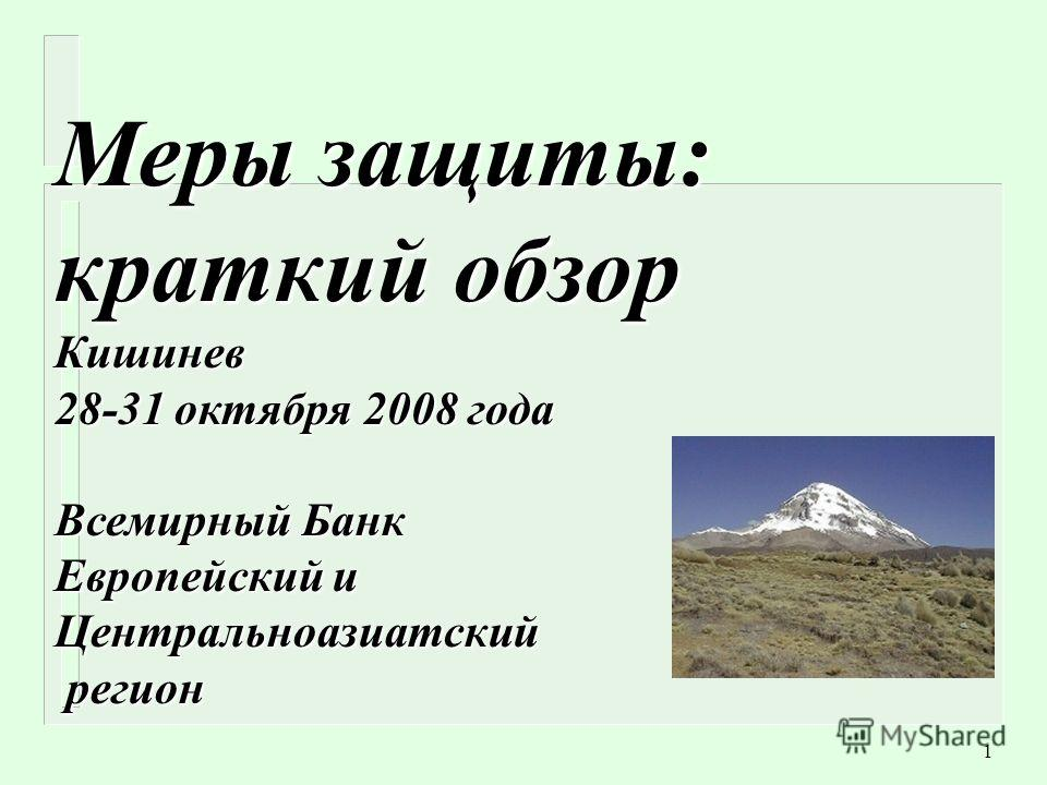 1 Меры защиты: краткий обзор Кишинев 28-31 октября 2008 года Всемирный Банк Европейский и Центральноазиатский регион регион