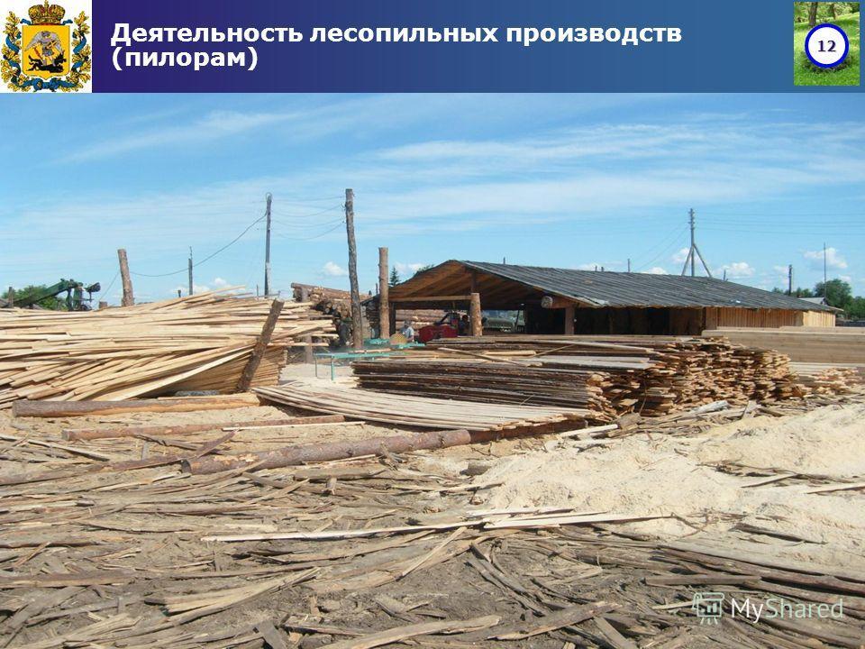 12 Деятельность лесопильных производств (пилорам)