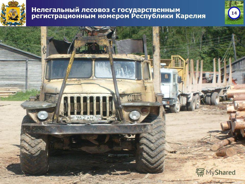 14 Нелегальный лесовоз с государственным регистрационным номером Республики Карелия