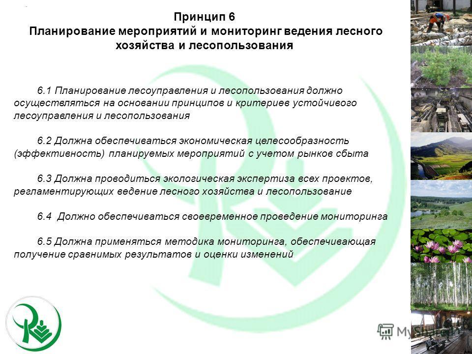 6.1 Планирование лесоуправления и лесопользования должно осуществляться на основании принципов и критериев устойчивого лесоуправления и лесопользования 6.2 Должна обеспечиваться экономическая целесообразность (эффективность) планируемых мероприятий с