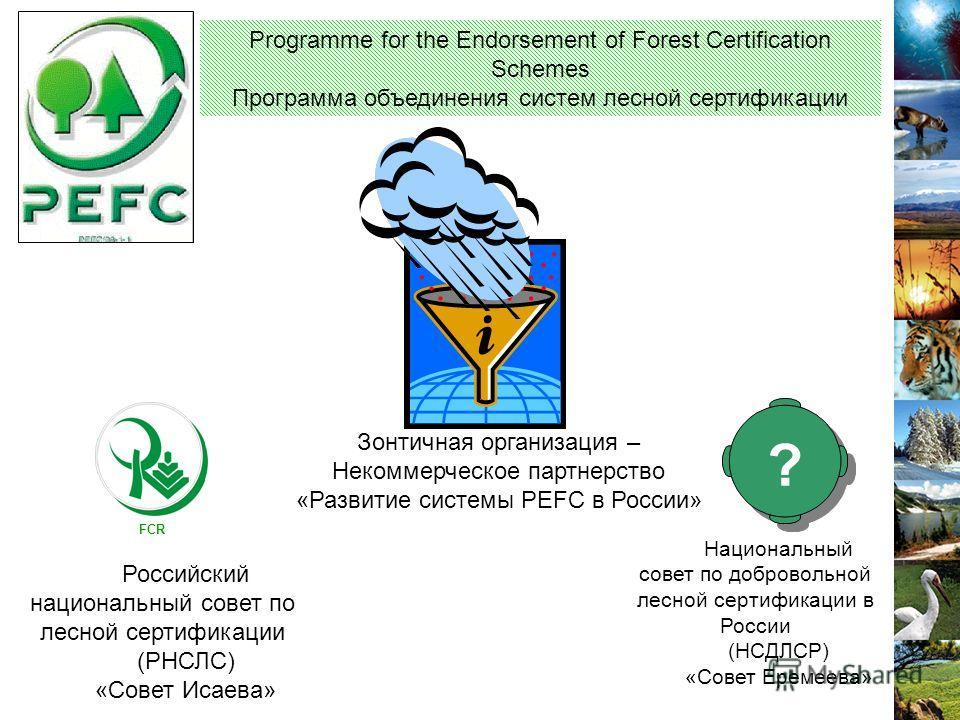 Зонтичная организация – Некоммерческое партнерство «Развитие системы PEFC в России» Programme for the Endorsement of Forest Certification Schemes Программа объединения систем лесной сертификации Национальный совет по добровольной лесной сертификации