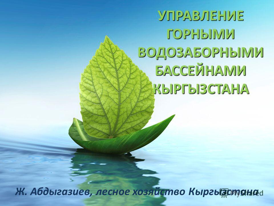 УПРАВЛЕНИЕ ГОРНЫМИ ВОДОЗАБОРНЫМИ БАССЕЙНАМИ КЫРГЫЗСТАНА Ж. Абдыгазиев, лесное хозяйство Кыргызстана