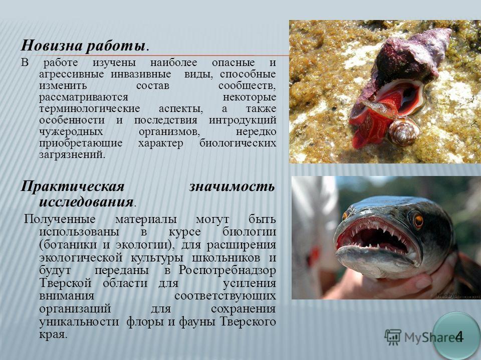 Новизна работы. В работе изучены наиболее опасные и агрессивные инвазивные виды, способные изменить состав сообществ, рассматриваются некоторые терминологические аспекты, а также особенности и последствия интродукций чужеродных организмов, нередко пр