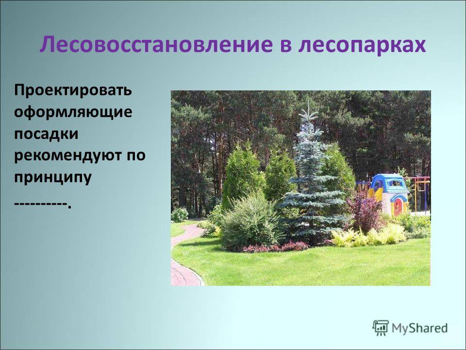 Лесовосстановление в лесопарках Проектировать оформляющие посадки рекомендуют по принципу ----------.