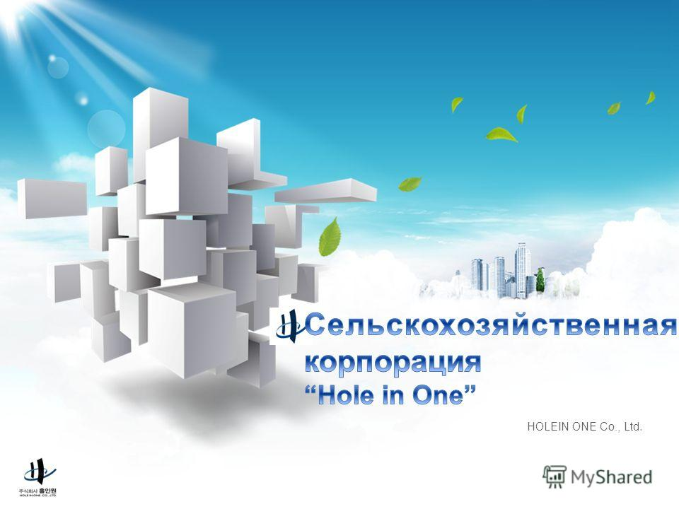 HOLEIN ONE Co., Ltd.