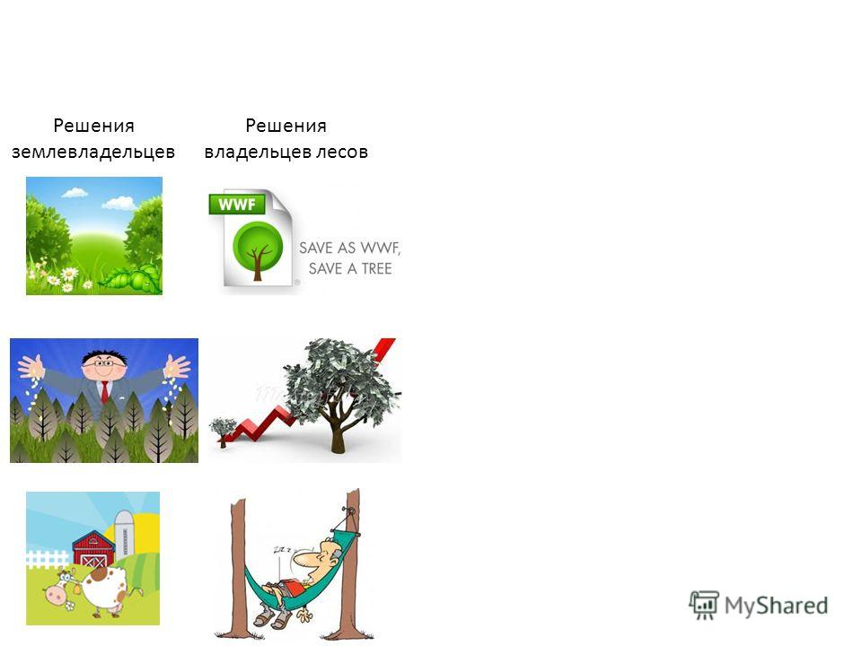 Решения землевладельцев Решения владельцев лесов