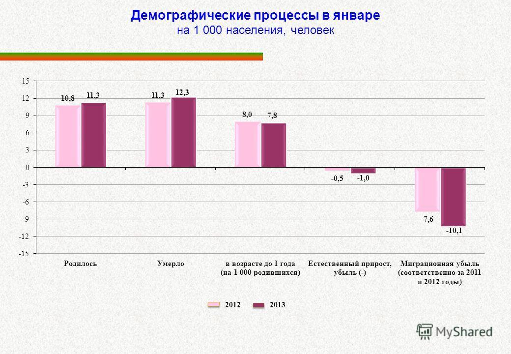 Демографические процессы в январе на 1 000 населения, человек 2012 2013