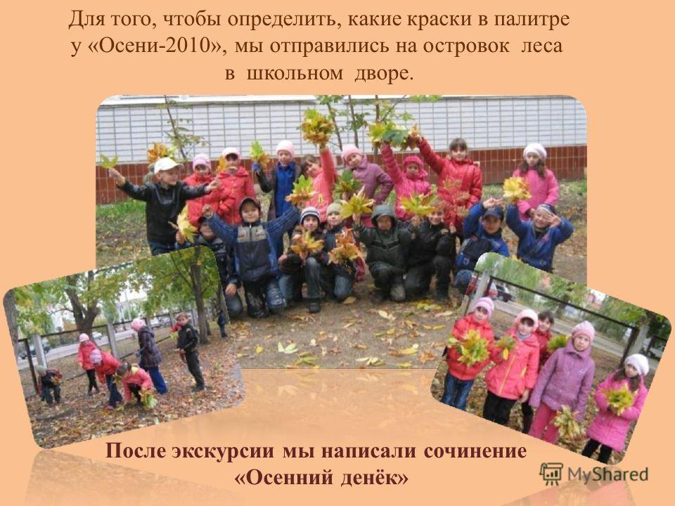 После экскурсии мы написали сочинение «Осенний денёк» Для того, чтобы определить, какие краски в палитре у «Осени-2010», мы отправились на островок леса в школьном дворе.