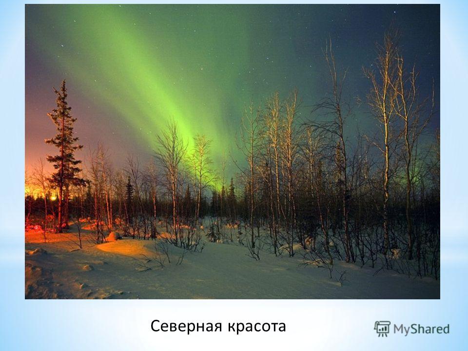 Северная красота