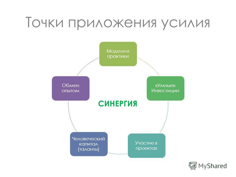 Точки приложения усилия Модели и практики «Умные» Инвестиции Участие в проектах Человеческий капитал (таланты) Обмен опытом СИНЕРГИЯ