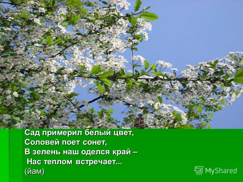 Сад примерил белый цвет, Соловей поет сонет, В зелень наш оделся край – Нас теплом встречает... Нас теплом встречает...(йам)