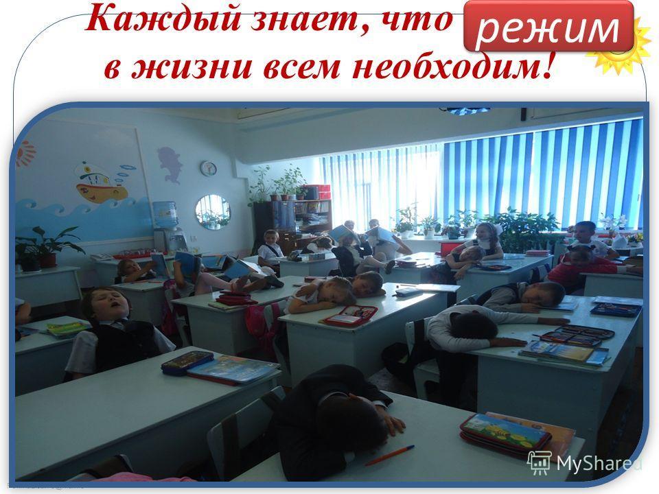 FokinaLida.75@mail.ru Каждый знает, что …… в жизни всем необходим! режим