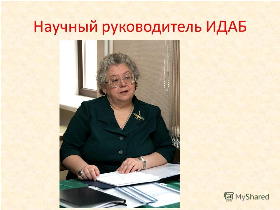 Научный руководитель ИДАБ