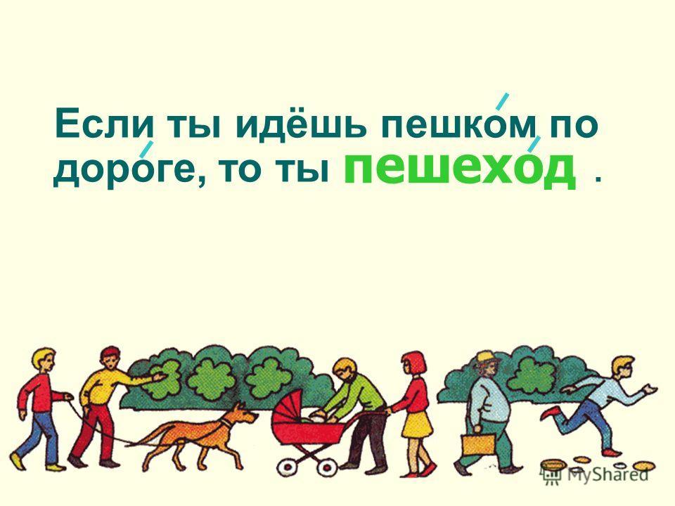 Если ты идёшь пешком по дороге, то ты. пешеход