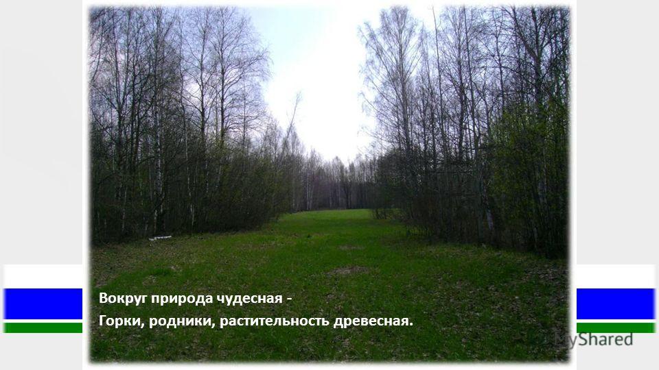 Вокруг природа чудесная - Горки, родники, растительность древесная.
