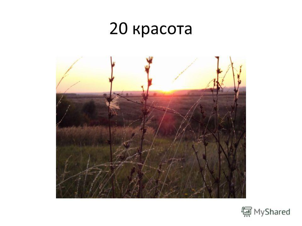 20 красота