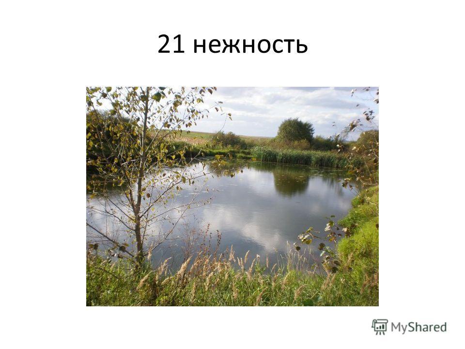 21 нежность