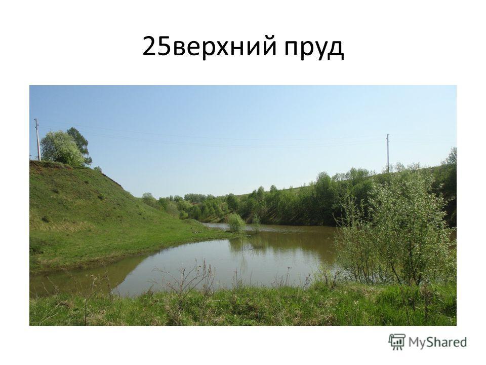 25 верхний пруд