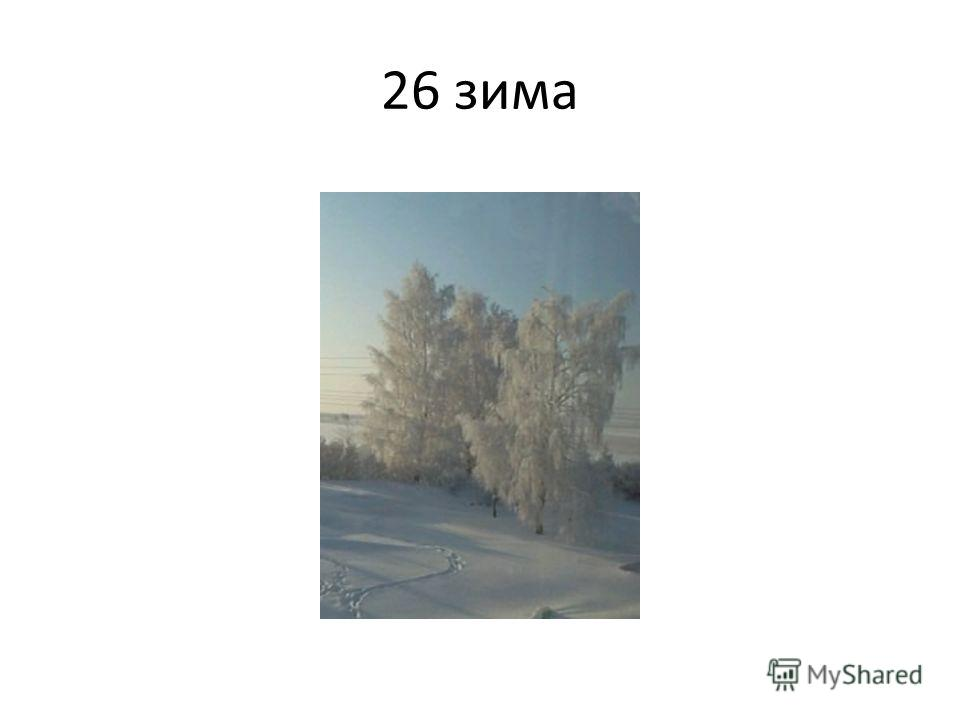 26 зима