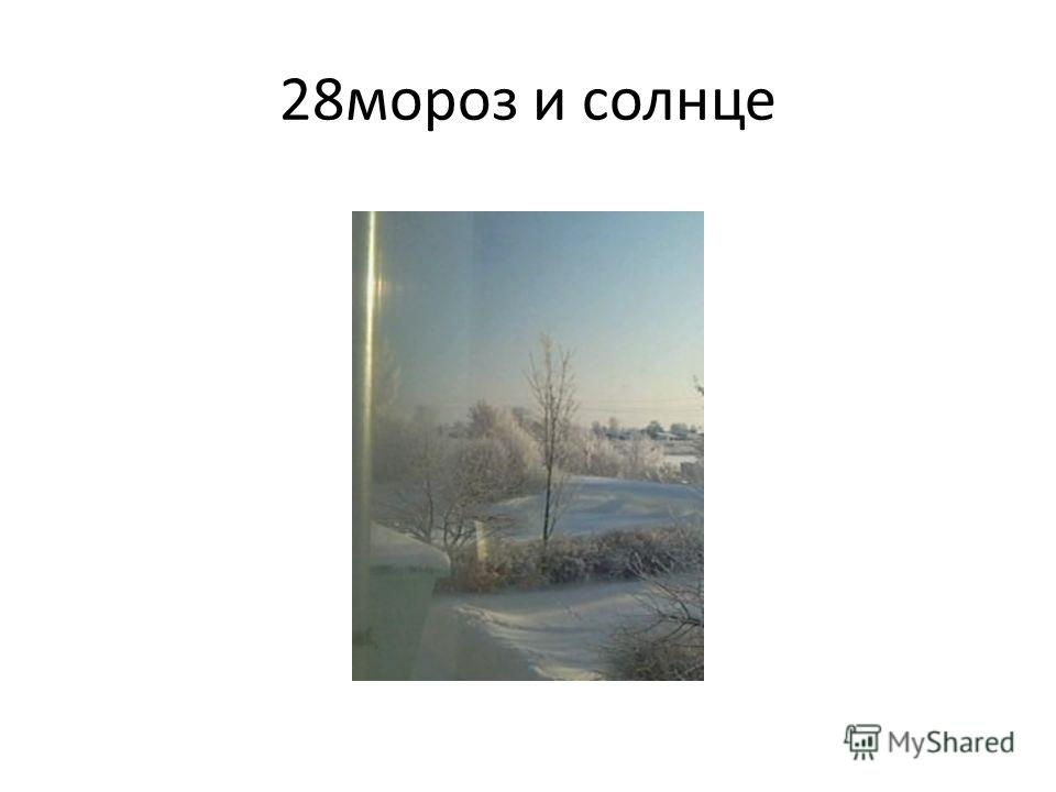 28 мороз и солнце