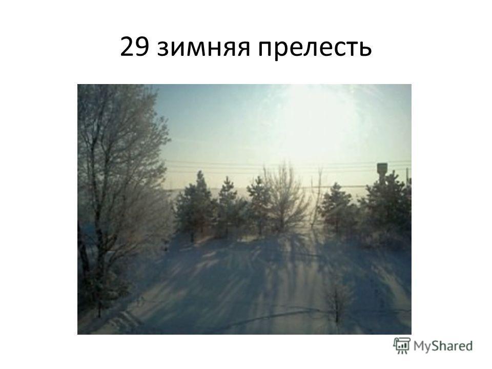 29 зимняя прелесть