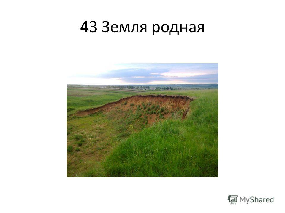 43 Земля родная