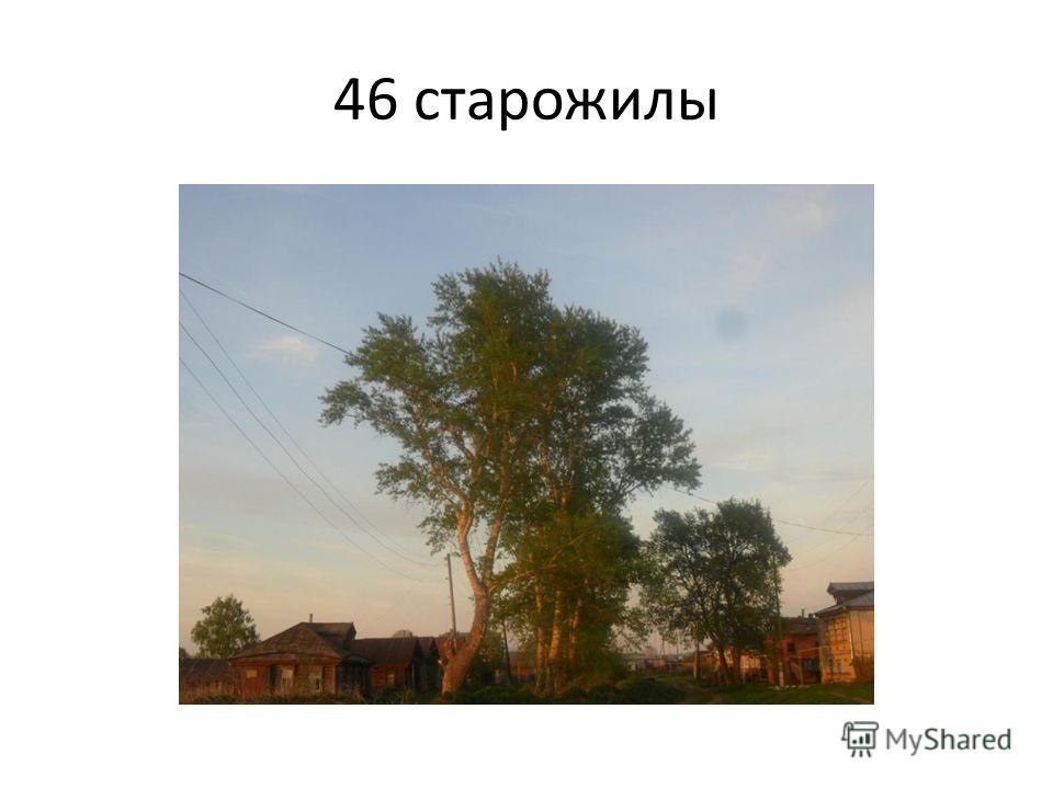 46 старожилы