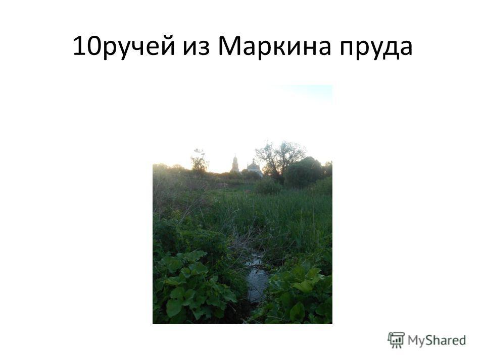 10 ручей из Маркина пруда