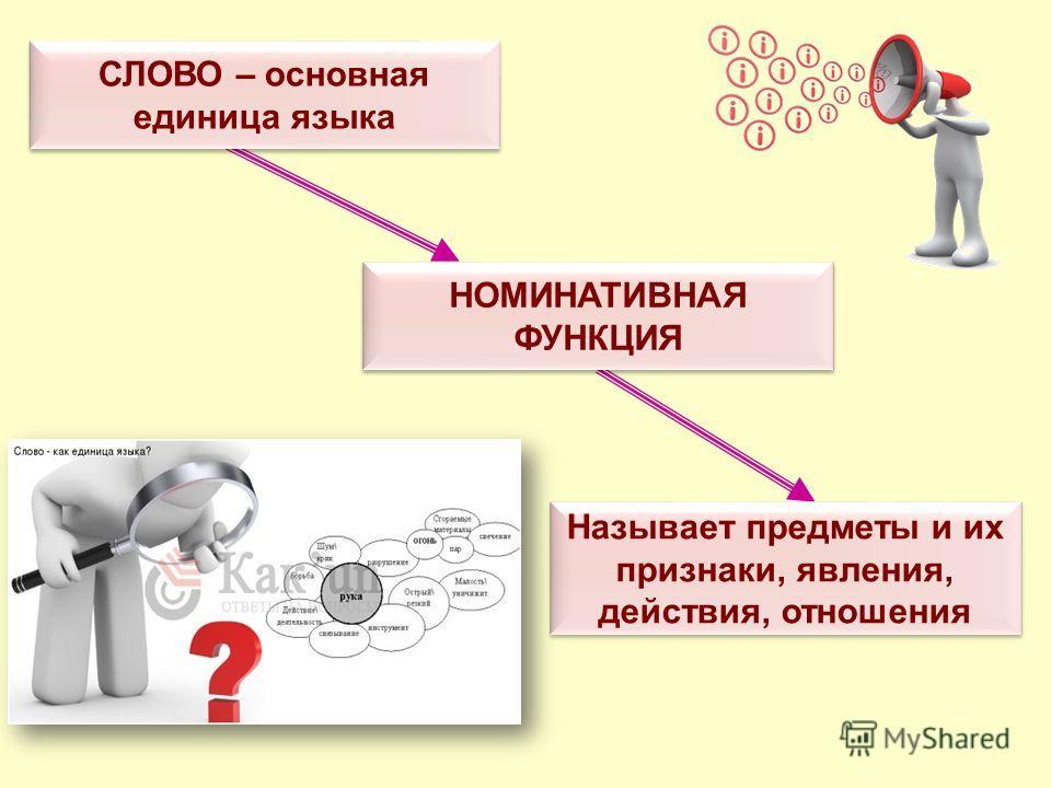 СЛОВО – основная единица языка НОМИНАТИВНАЯ ФУНКЦИЯ Называет предметы и их признаки, явления, действия, отношения