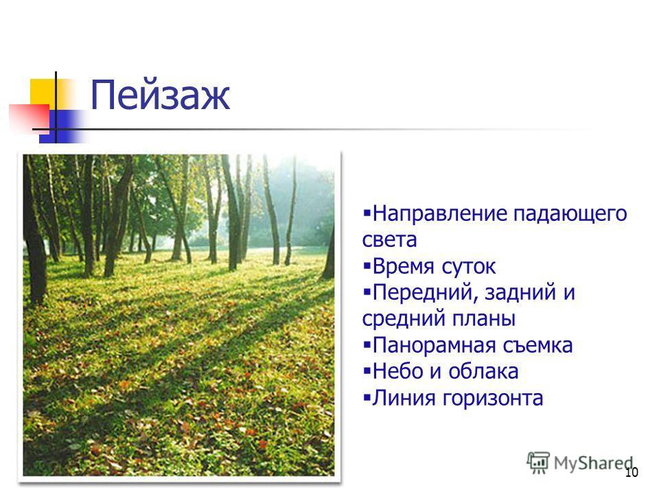 10 Пейзаж Направление падающего света Время суток Передний, задний и средний планы Панорамная съемка Небо и облака Линия горизонта