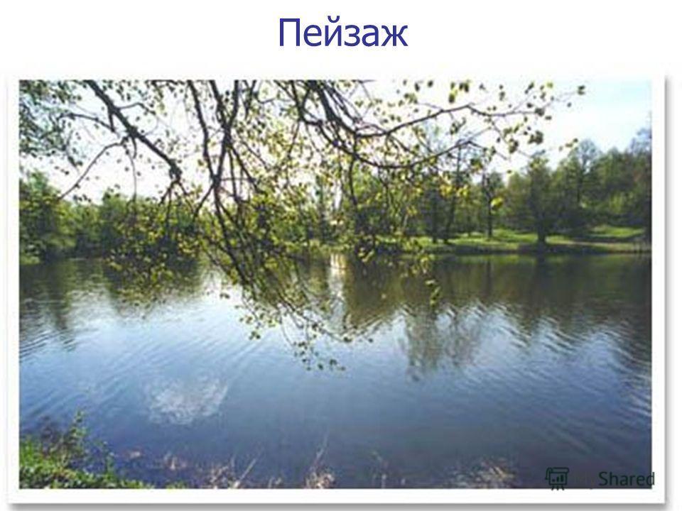 11 Пейзаж