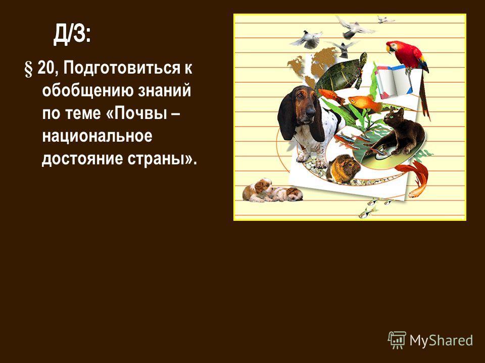 § 20, Подготовиться к обобщению знаний по теме «Почвы – национальное достояние страны».