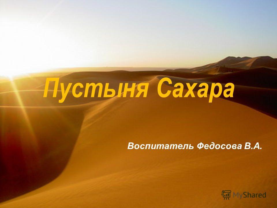 Пустыня Сахара Воспитатель Федосова В.А.