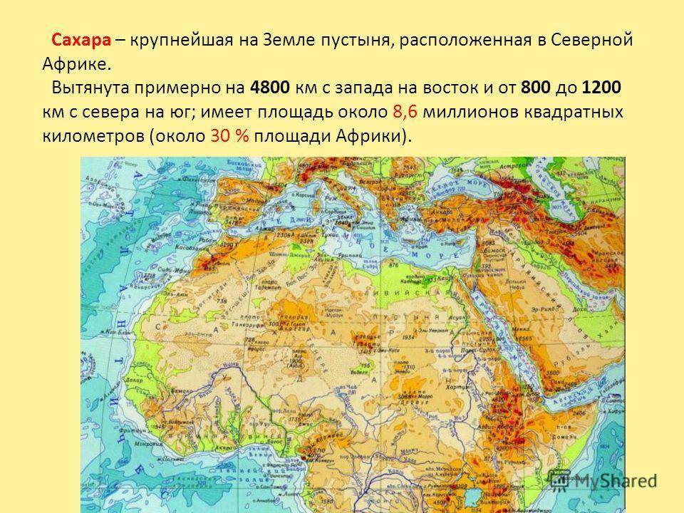 Сахара – крупнейшая на Земле пустыня, расположенная в Северной Африке. Вытянута примерно на 4800 км с запада на восток и от 800 до 1200 км с севера на юг; имеет площадь около 8,6 миллионов квадратных километров (около 30 % площади Африки).