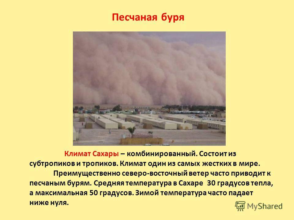Песчаная буря Климат Сахары – комбинированный. Состоит из субтропиков и тропиков. Климат один из самых жестких в мире. Преимущественно северо-восточный ветер часто приводит к песчаным бурям. Средняя температура в Сахаре 30 градусов тепла, а максималь