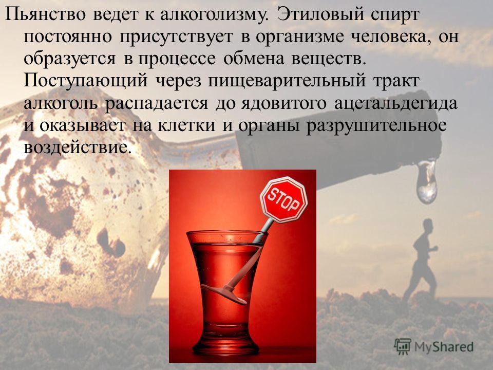 Пьянство ведет к алкоголизму. Этиловый спирт постоянно присутствует в организме человека, он образуется в процессе обмена веществ. Поступающий через пищеварительный тракт алкоголь распадается до ядовитого ацетальдегида и оказывает на клетки и органы