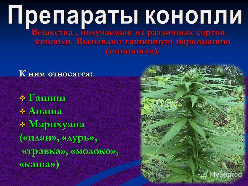 Наркотики получаемые из листьев кокаинового куста, употребляемые также как обезболивающее средство. К ним относятся: Кокаин Кокаин Крэк Крэк Другие производные Другие производные кокаина кокаина