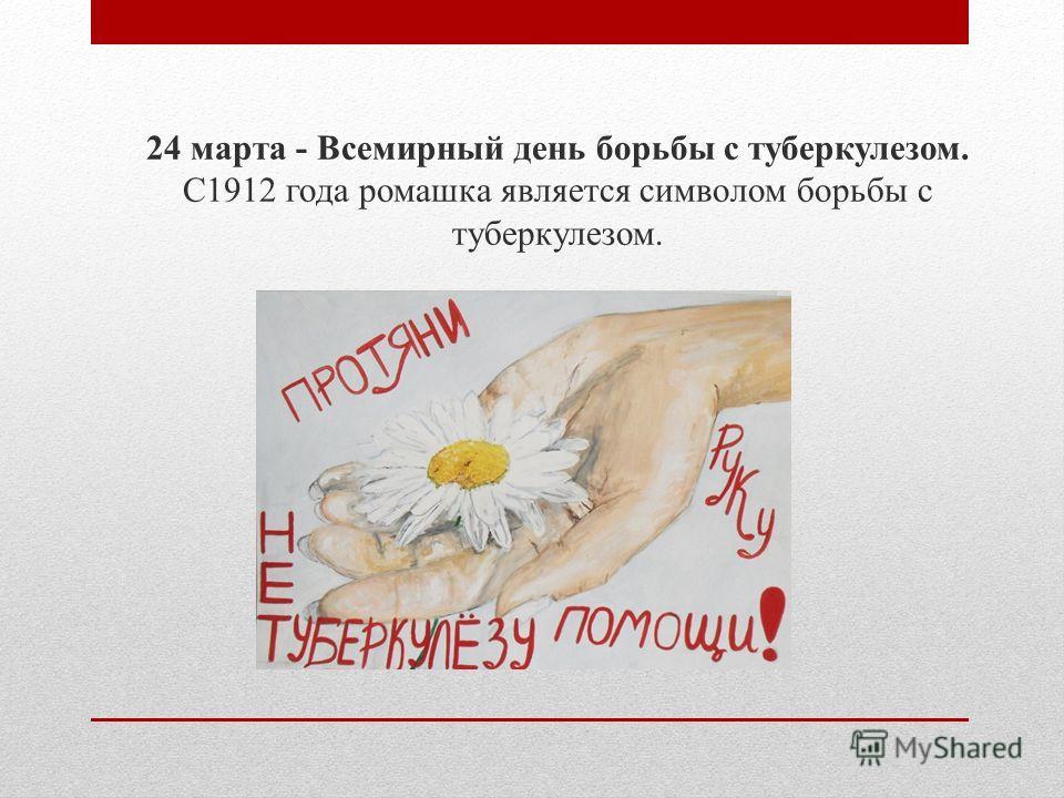 24 марта - Всемирный день борьбы с туберкулезом. С1912 года ромашка является символом борьбы с туберкулезом.