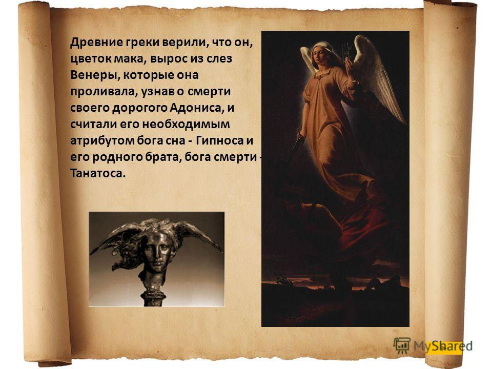 Древние греки верили, что он, цветок мака, вырос из слез Венеры, которые она проливала, узнав о смерти своего дорогого Адониса, и считали его необходимым атрибутом бога сна - Гипноса и его родного брата, бога смерти - Танатоса.
