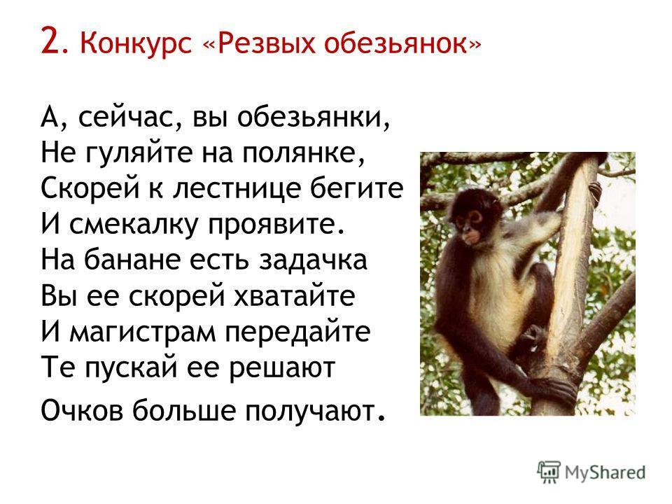 2. Конкурс «Резвых обезьянок» А, сейчас, вы обезьянки, Не гуляйте на полянке, Скорей к лестнице бегите И смекалку проявите. На банане есть задачка Вы ее скорей хватайте И магистрам передайте Те пускай ее решают Очков больше получают.