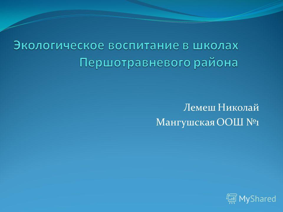 Лемеш Николай Мангушская ООШ 1