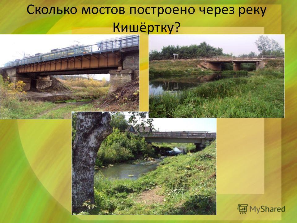 Сколько мостов построено через реку Кишёртку? МКДОУ Кишертский детский сад 4