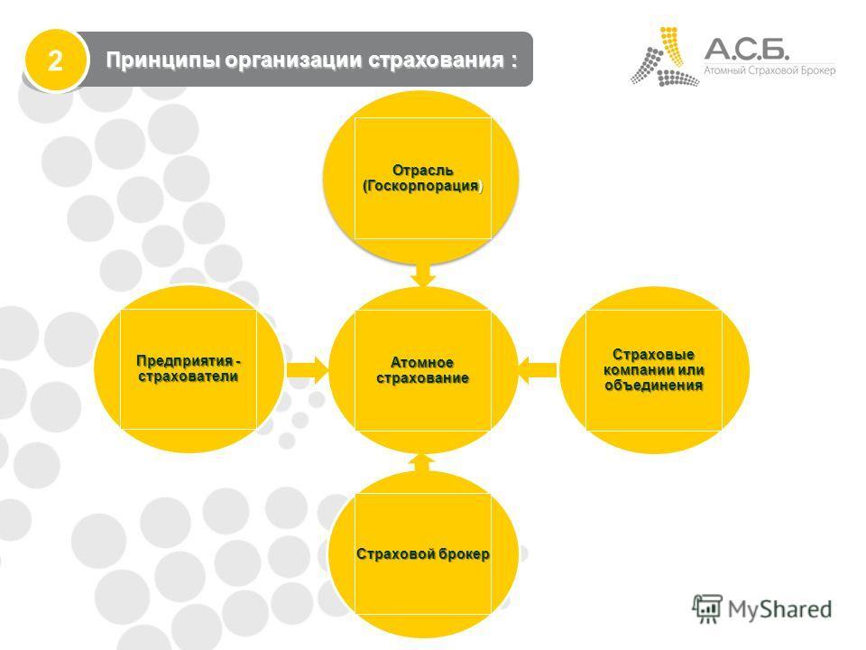 Атомное страхование Страховые компании или объединения Страховой брокер Предприятия - страхователи Принципы организации страхования : Принципы организации страхования : 2 Отрасль (Госкорпорация)