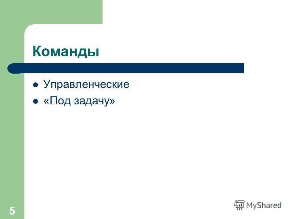 5 Команды Управленческие «Под задачу»